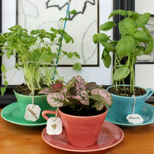 Clay Tea Bag Herb Markers