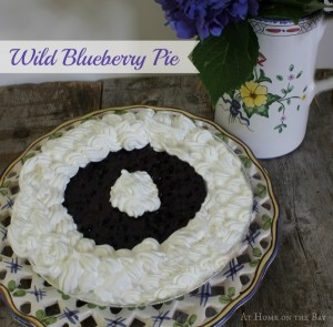 Wild Blueberry Pie