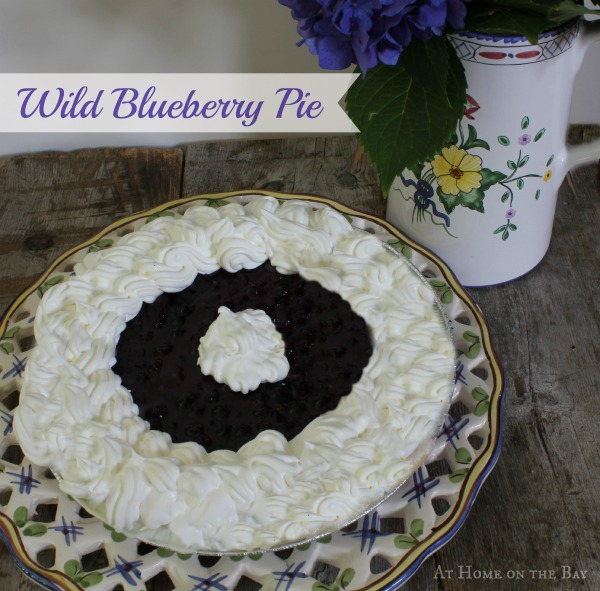 wild blueberry pie recipes remembered cranberry and wild blueberry pie ...