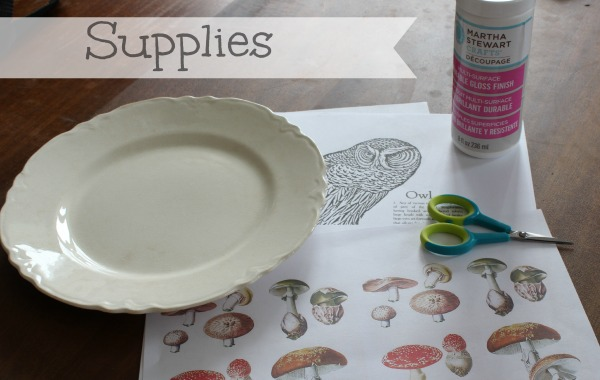 decoupage owl plate supplies