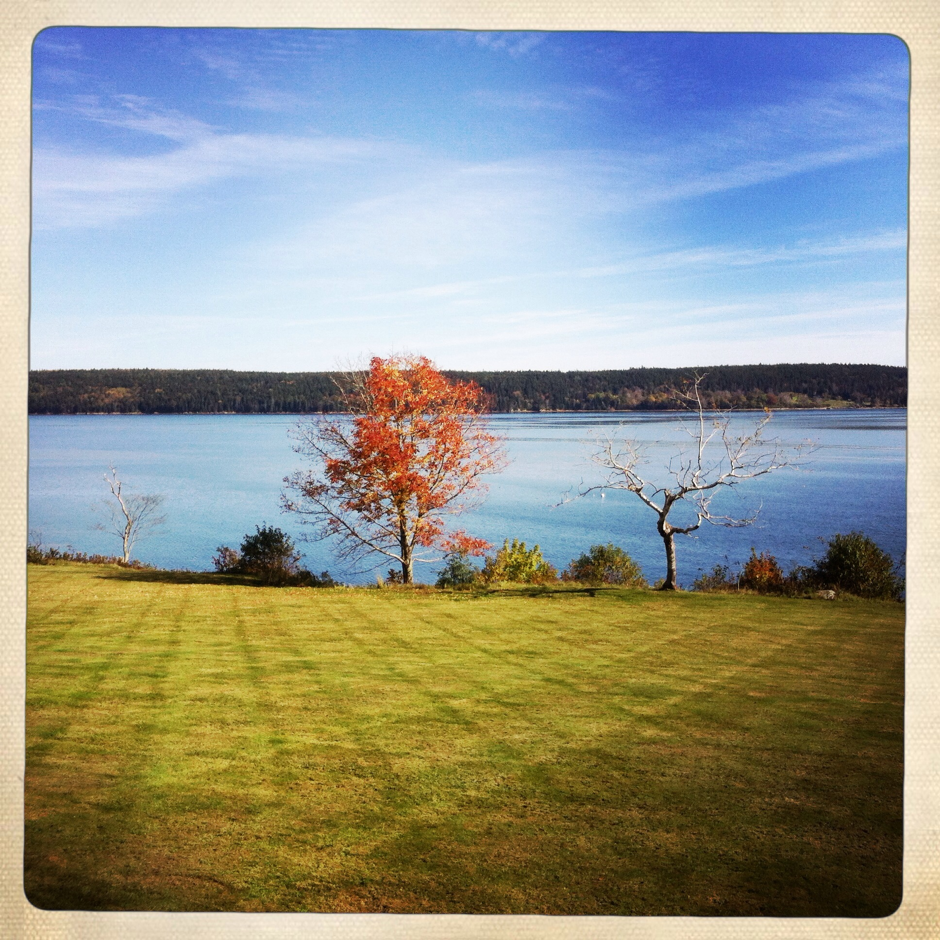 Fall Photos from Blue Hill Bay