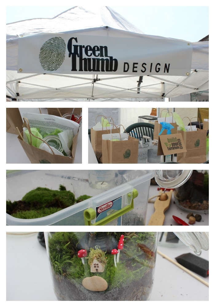 cleveland flea-green thumb terrarium class